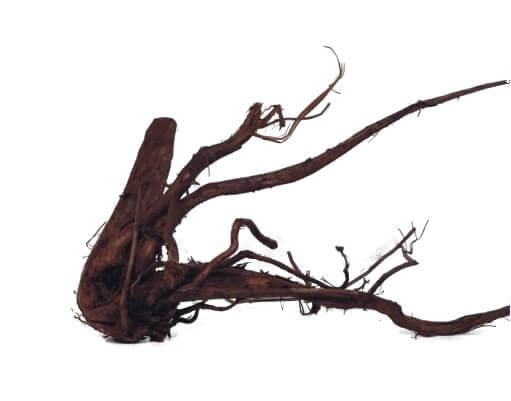 Afbeelding kienhout